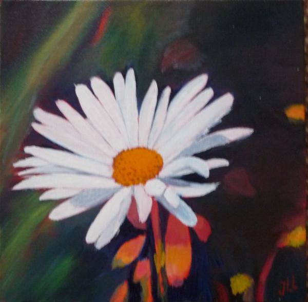Marguerite - Huile 20 x 20