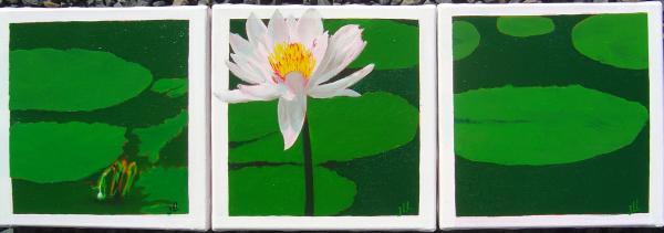 Triptyque fleurs - Huile 60 x20 ( 3 fois 20x20)