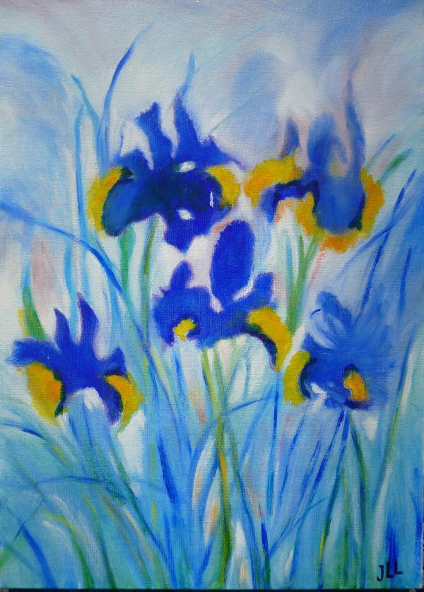 Iris - Huile 46 x 33
