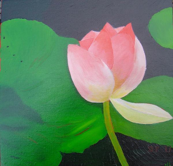Série fleur3 - Huile 40x 40